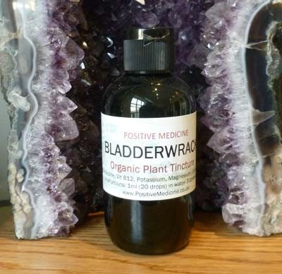 Organic Bladderwrack Tincture