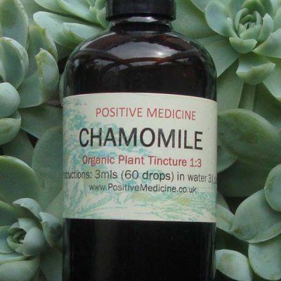 Organic Chamomile Tincture